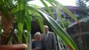 Starosta obvodu ing. Antonín Maštalíř po své návštěvě vily slíbil majitelce domu MUDr. Drahoslavě Doležílkové palmu.