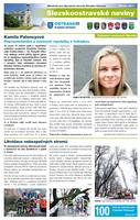 slezskoostravske-noviny-02-2017-FIN-web_Stránka_01